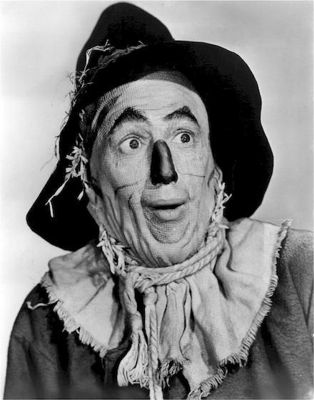 Image of Scarecrow - Oz Principle Book Review